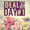 Deal Of The Day - Flower Bunch